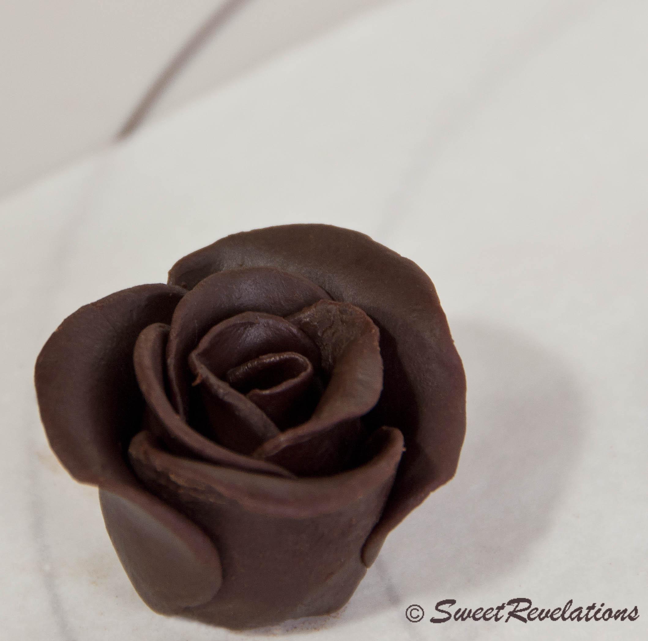Dark Chocolate Roses | SweetRevelations