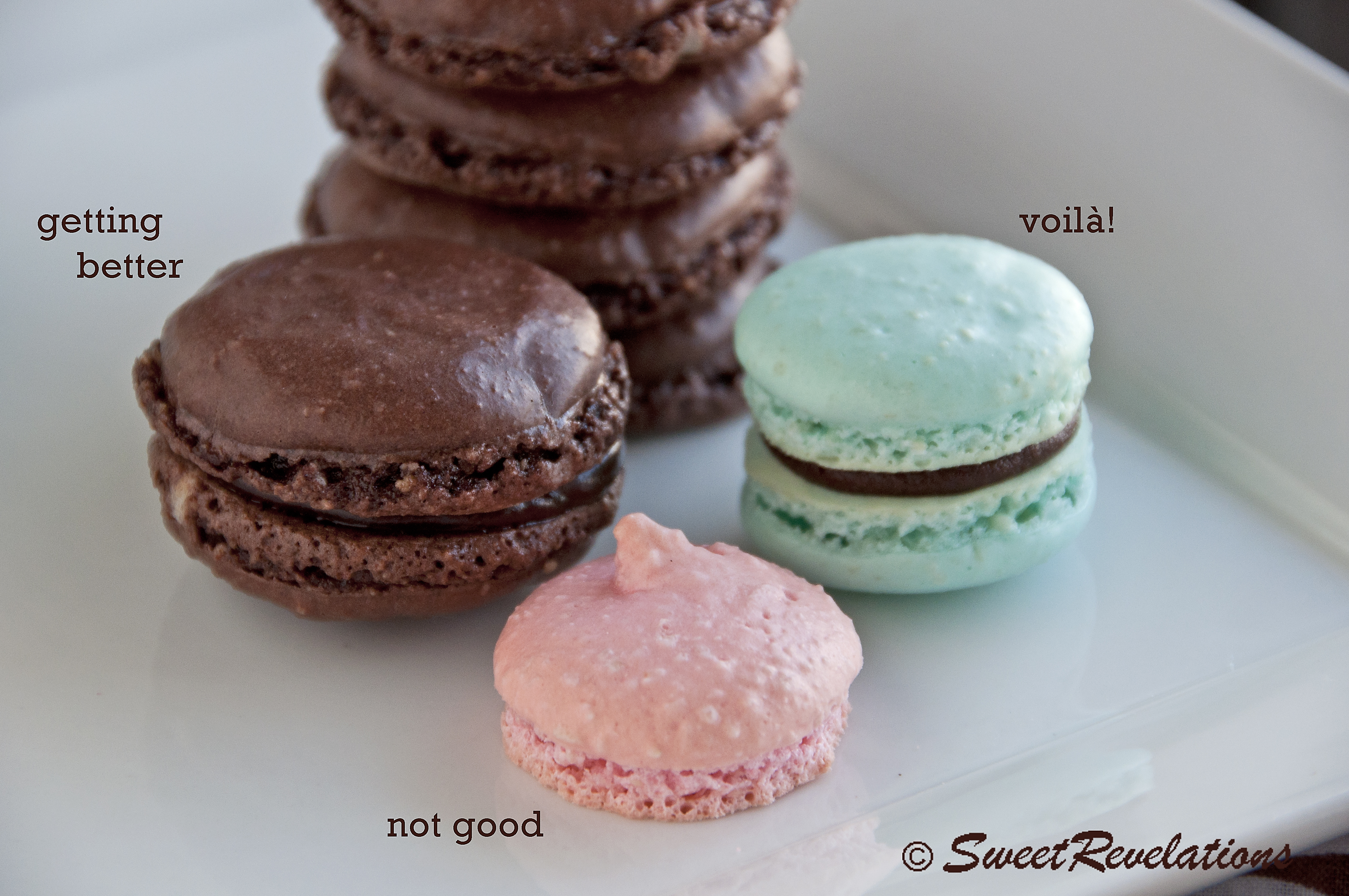 French Chocolate Macaroons | Macarons Recipe — Dishmaps